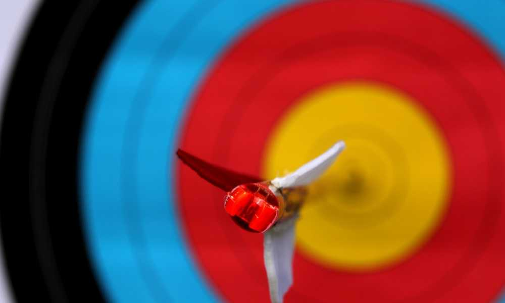 Bag vs. Block Archery Target