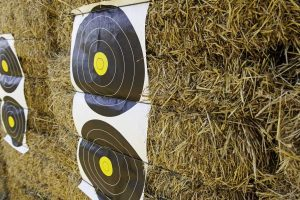 Morrell Yellow Jacket YJ-350 Field Point Bag Archery Target Review