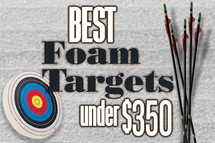 Best Foam Targets Under $350 (with several choices under $100)