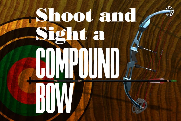 How To Properly Shoot and Sight In A Compound Bow