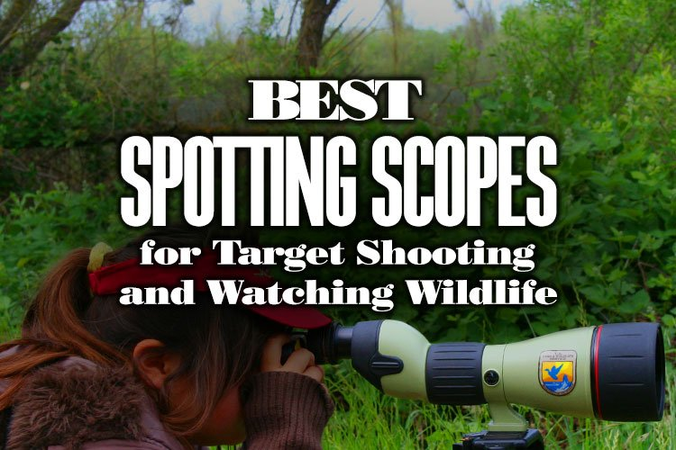 BestSpottingScopesForTargetShooting