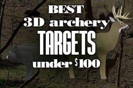 Best3DArcheryTargetsUnder100