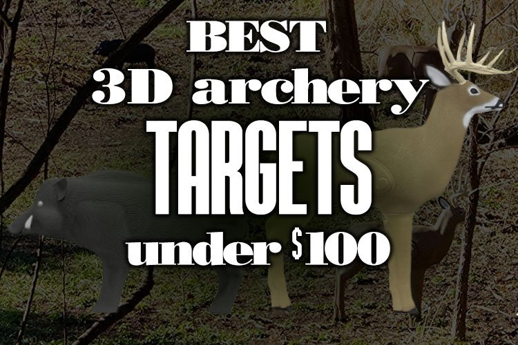 Best 3D Archery Targets Under $100